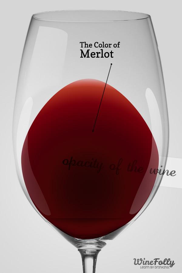4 sự thật ít ai biết về rượu vang đỏ Merlot