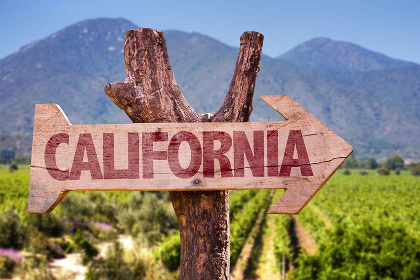 SỰ KHÁC BIỆT GIỮA VANG CALIFORNIA_MỸ & VANG PHÁP