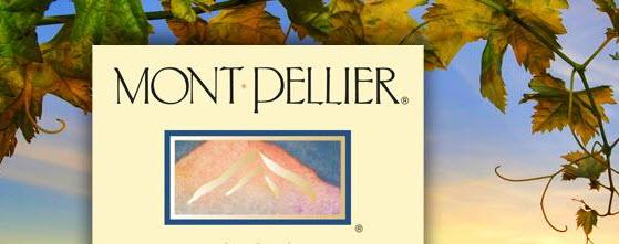 mont pellier banner